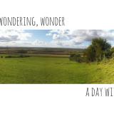 Wandering, wondering, wonder