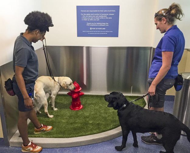 "Oregon Guide Dogs for the Blind trainers LaCrisha Kaufman and ""Jiminy"" (left) and LaniJo Bachmann and ""Veron"" check out the new PDX Pet Relief Area. [Photo credit: Port of Portland]"